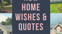 housewarming wishes and quotes for a congratulations card someone