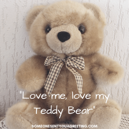 Love Me My Teddy Bear Quote