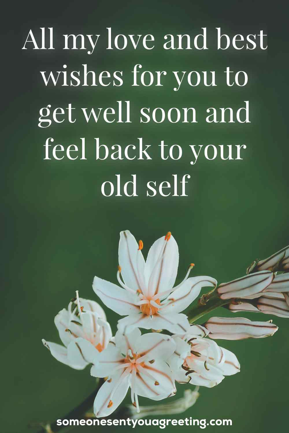 get well and feel better soon message